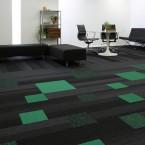 balance echo carpet planks studio